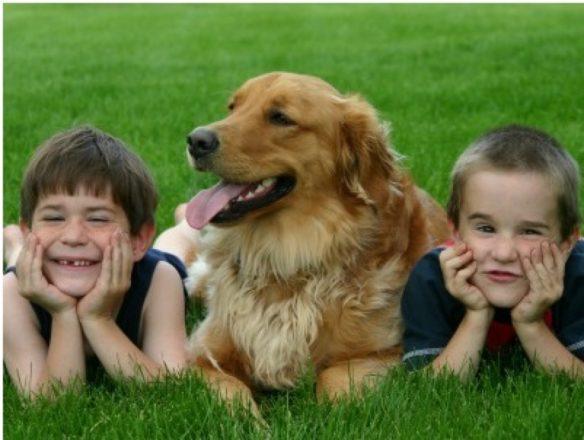 Mascotas: cómo hacerlas parte de la convivencia