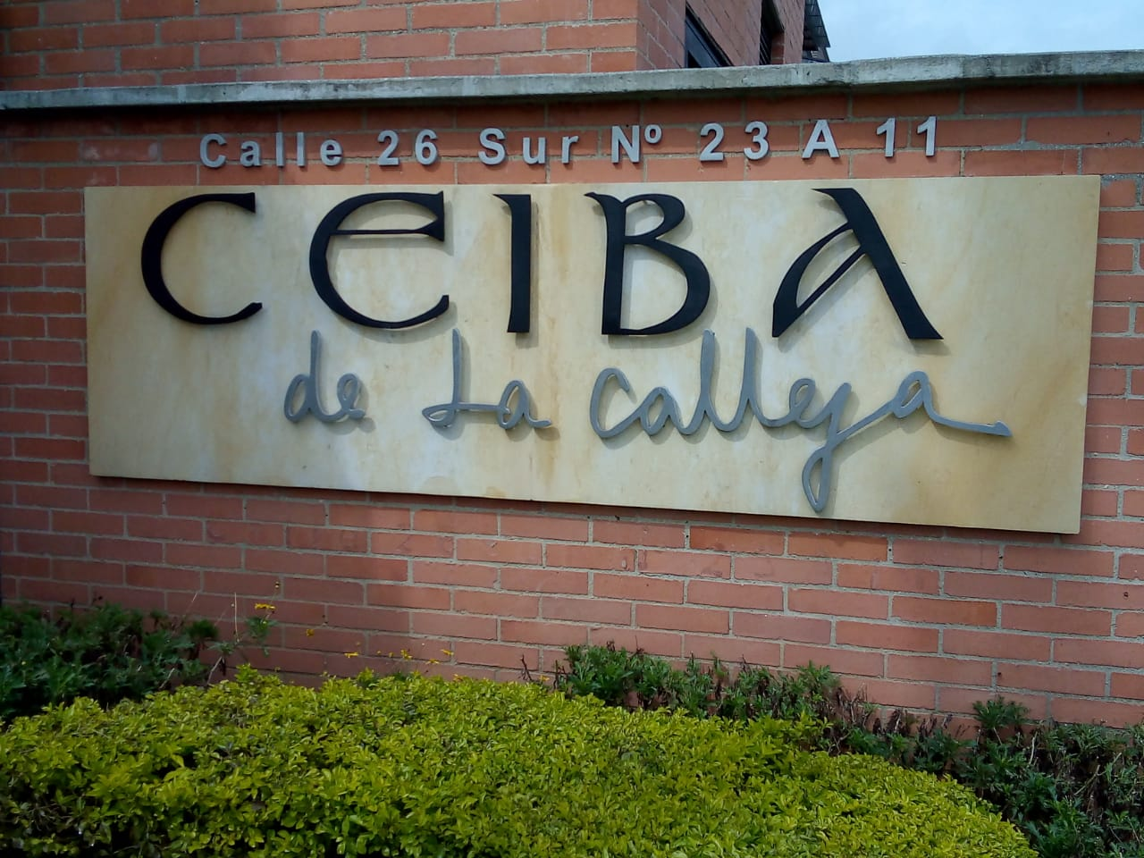 Ceiba de La Calleja